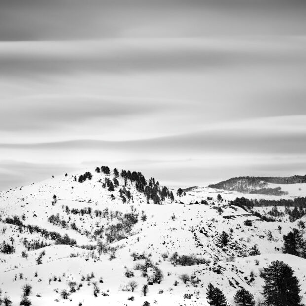 Adagio White © Julia Anna Gospodarou 2012