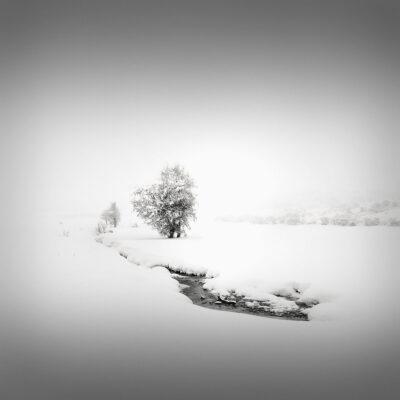 Catharsis III - The Path © Julia Anna Gospodarou 2013