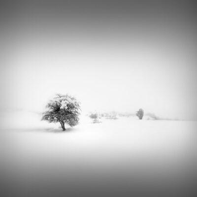 Catharsis IV - Spellbound - Pindus Mountains © Julia Anna Gospodarou