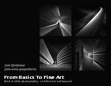 From Basics to Fine Art by Julia Anna Gospodarou & Joel Tjintjelaar