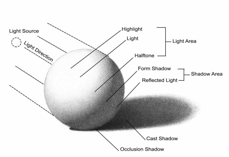 Types of light and shadow on a rendered volume