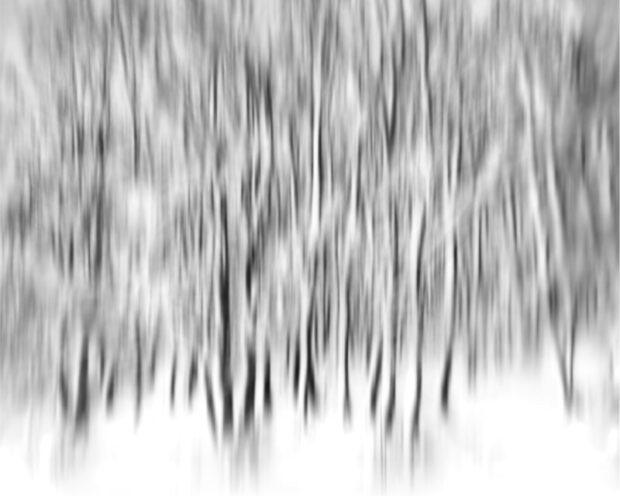 Misty Dream © Julia Anna Gospodarou