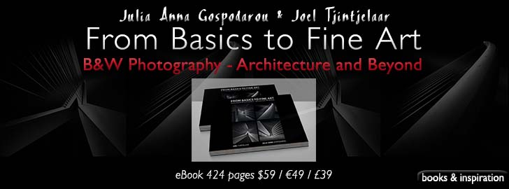 Book From Basics to Fine Art by Julia Anna Gospodarou & Joel Tjintjelaar