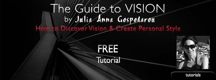 Guide to Vision by Julia Anna Gospodarou
