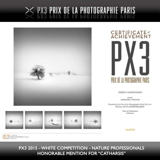 Fine Art Series Catharsis Award and Tutorial - PX3 Paris 2015 White - Honorable Mention