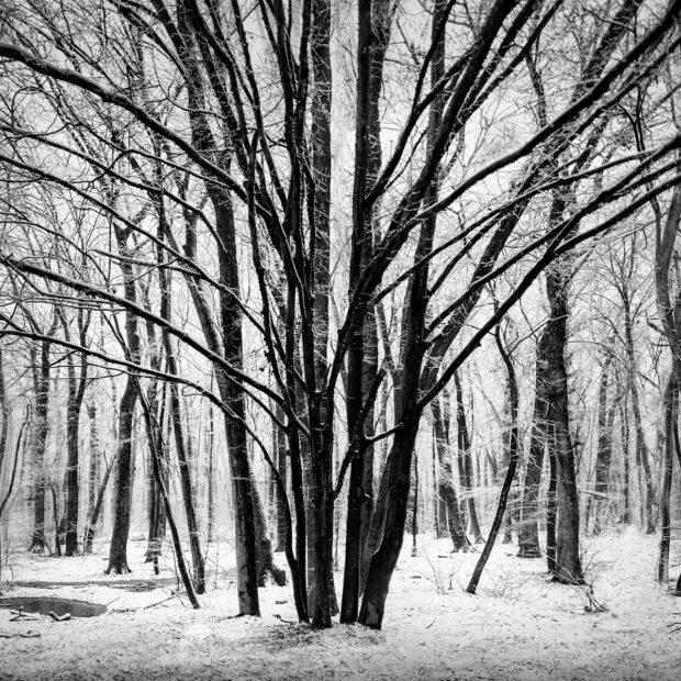 Silence © Julia Anna Gospodarou - art and fine art photography