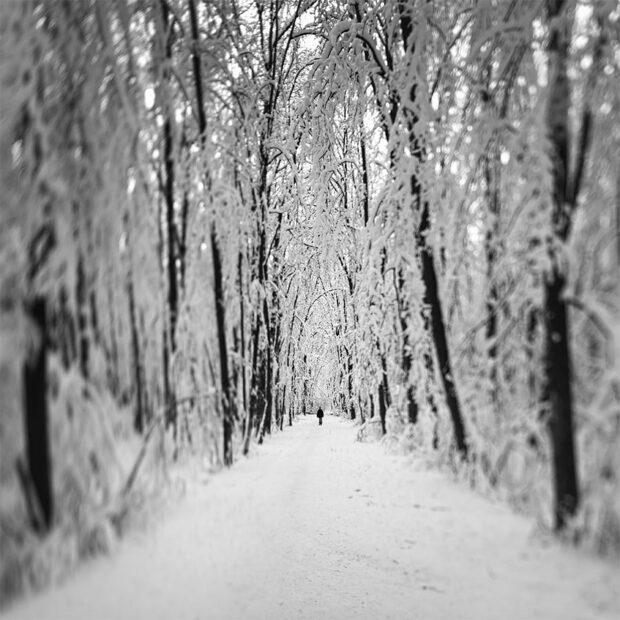White Veil © Julia Anna Gospodarou