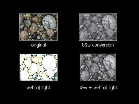 Web of Light © George DeWolfe