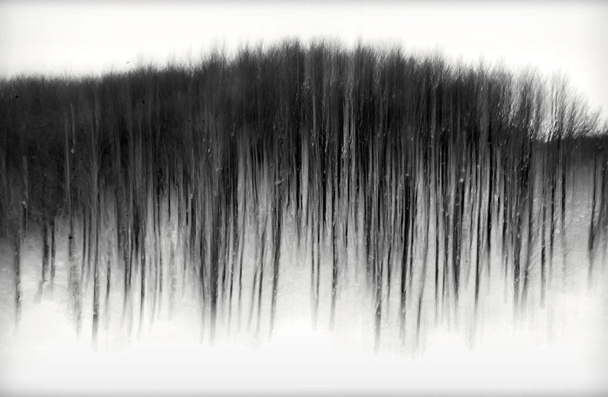 Flowing Dance I © Julia Anna Gospodarou