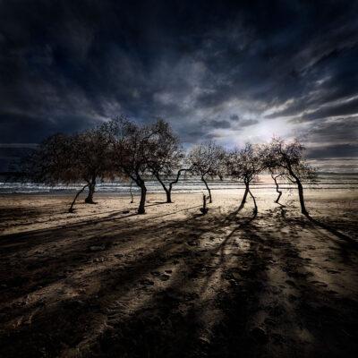 Blue Memories © Julia Anna Gospodarou