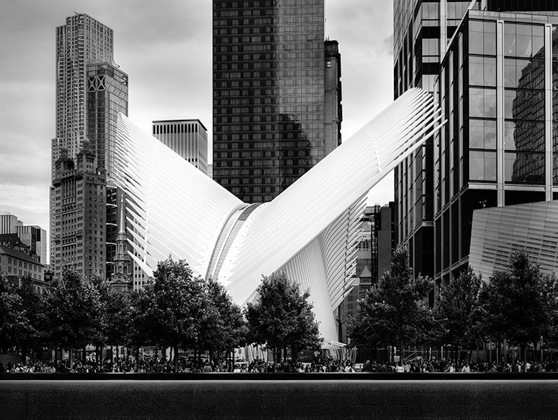 Julia Anna Gospodarou_Oculus by Calatrava - B&W version_New York
