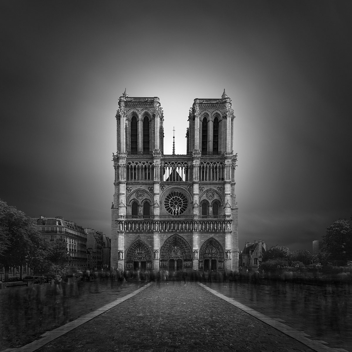 Enlightenment II - Notre Dame Cathedral Paris © Julia Anna Gospodarou 2017