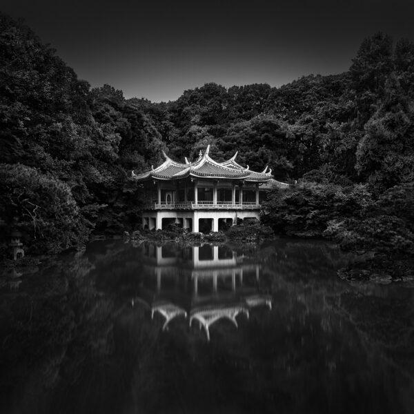 Komorebi I - Inner Light- Tokyo - © Julia Anna Gospodarou 2019