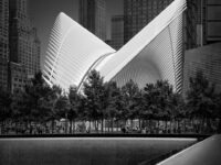 Flying Away II - Oculus, New York © Julia Anna Gospodarou 2020